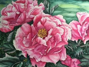 Peonies in Watercolor